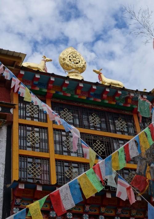 20130930_ringha_tempel_rad
