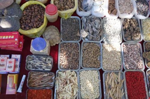20131011_shaxi_freitagsmarkt_chinesische_medizin