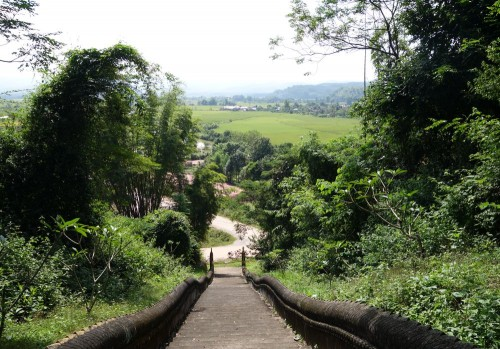 Blick von der Stuppa über Reisfelder