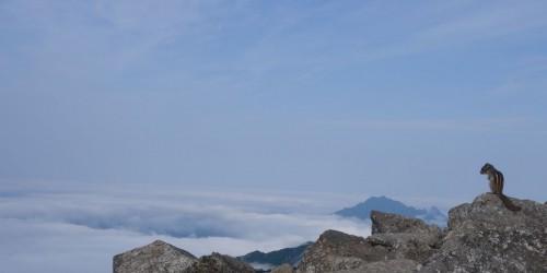 20140612_seoraksan_dubong_streifenhoernchen_blick_wolken