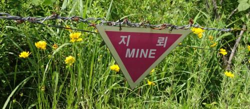 20140614_suedkorea_dmz_mines